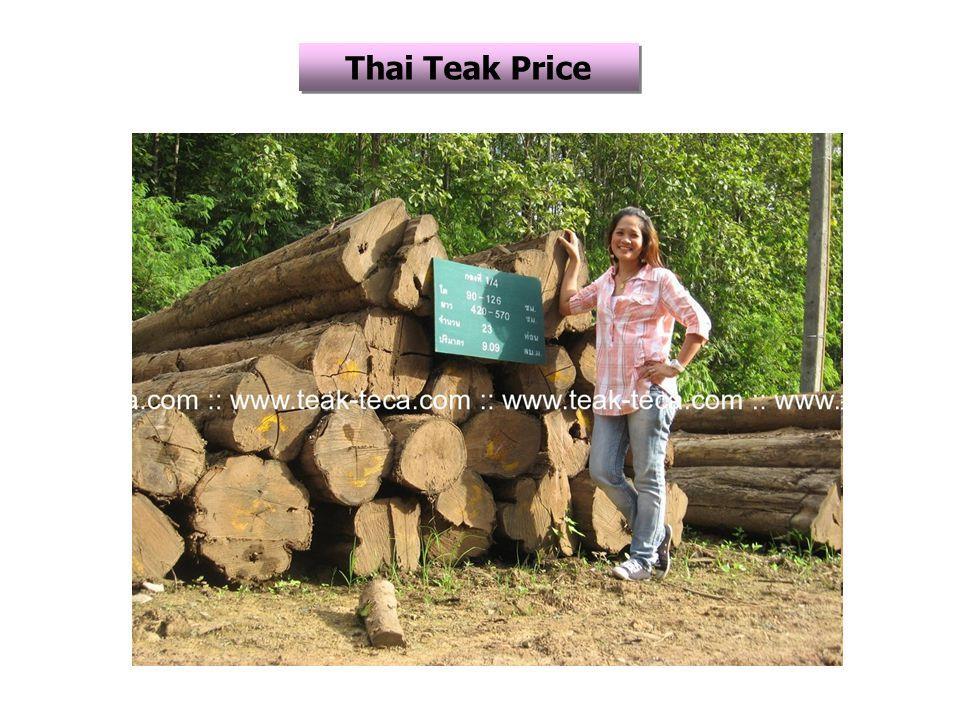 Thai Teak Price