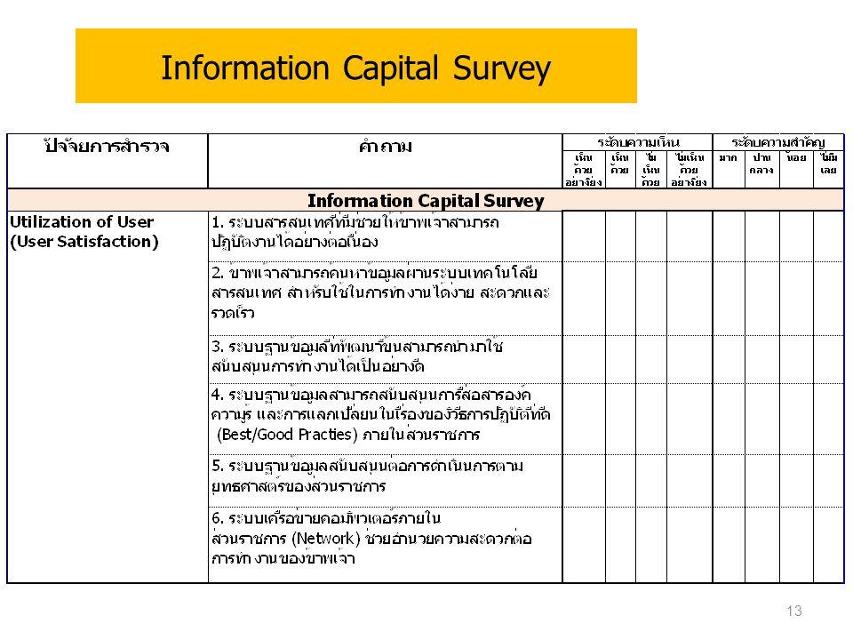 Information Capital Survey 13