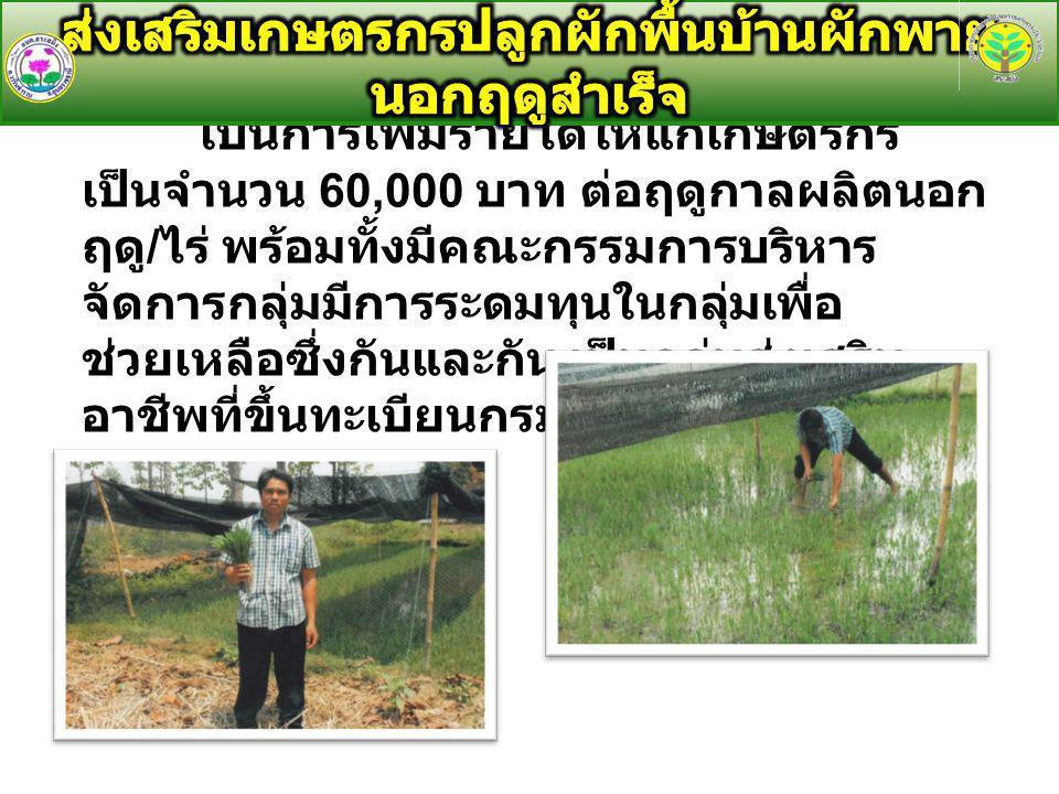 เป็นการเพิ่มรายได้ให้แก่เกษตรกร เป็นจำนวน 60,000 บาท ต่อฤดูกาลผลิตนอก ฤดู / ไร่ พร้อมทั้งมีคณะกรรมการบริหาร จัดการกลุ่มมีการระดมทุนในกลุ่มเพื่อ ช่วยเหลือซึ่งกันและกัน เป็นกลุ่มส่งเสริม อาชีพที่ขึ้นทะเบียนกรมส่งเสริมการเกษตร