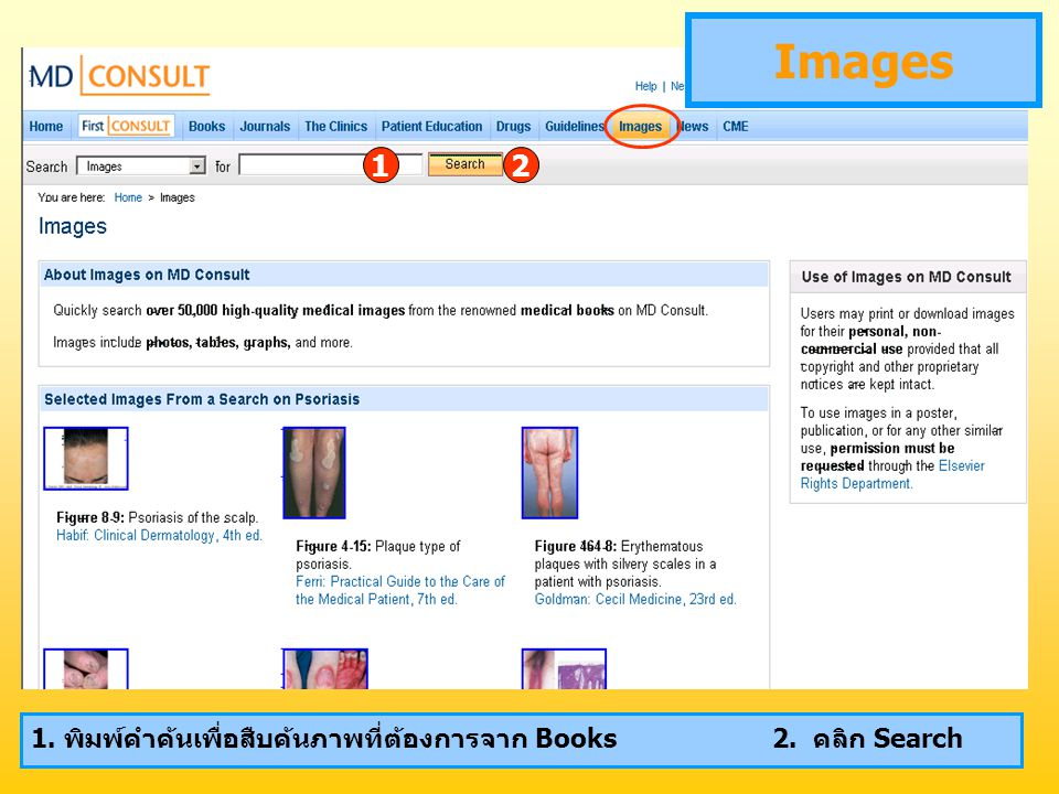 Images 12 1. พิมพ์คำค้นเพื่อสืบค้นภาพที่ต้องการจาก Books2. คลิก Search