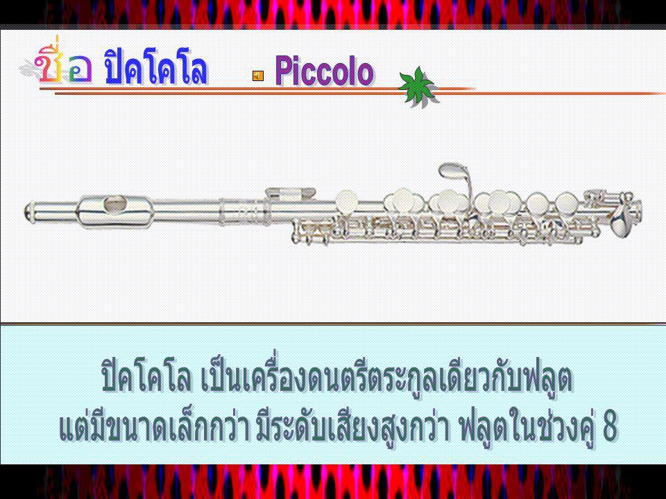 การบรรเลง เทคนิคการ บรรเลง Vibrato Vibrato Multi phonics Multi phonics สไตล์การ บรรเลง Chamber Chamber Orchestral Orchestral ความกว้างช่วงเสียง 3 ช่วง
