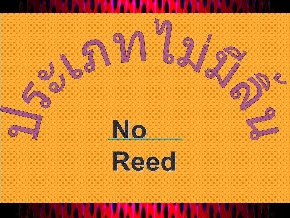No Reed