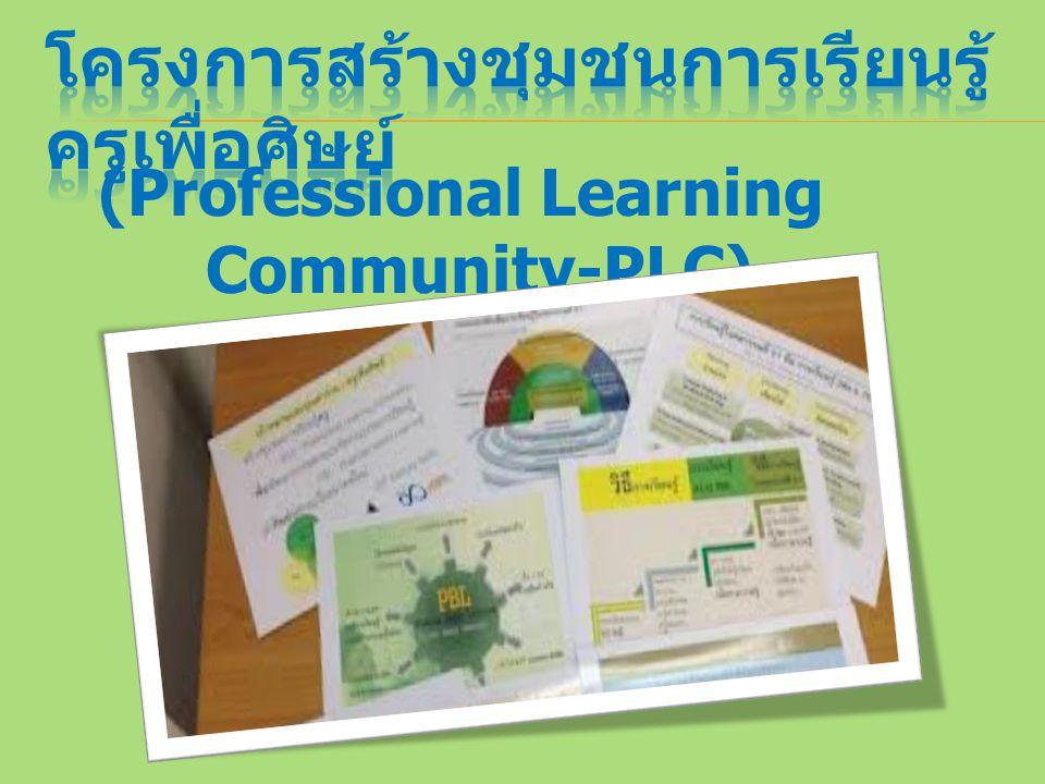 (Professional Learning Community-PLC)