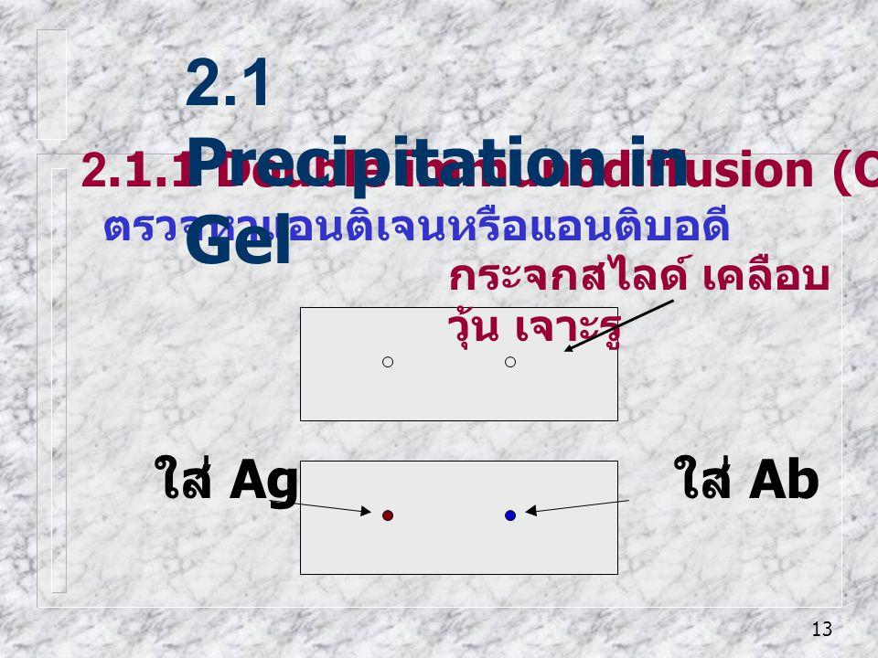 13 2.1.1 Double immunodiffusion (Ouchterlony's method) ตรวจหาแอนติเจนหรือแอนติบอดี 2.1 Precipitation in Gel ใส่ Ag ใส่ Ab กระจกสไลด์ เคลือบ วุ้น เจาะร