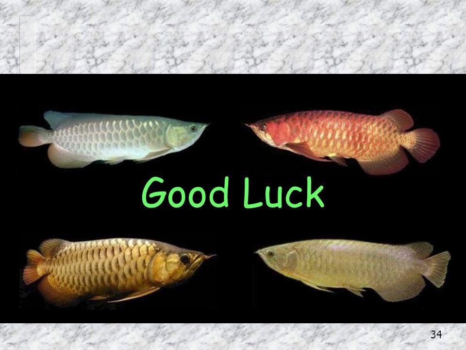 34 Good Luck