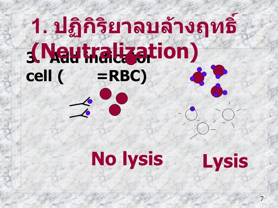 7 3. Add indicator cell ( =RBC) Lysis No lysis 1. ปฏิกิริยาลบล้างฤทธิ์ (Neutralization)