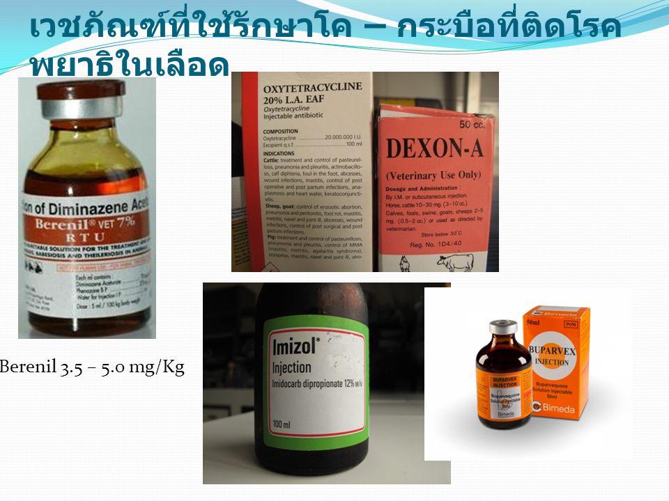 เวชภัณฑ์ที่ใช้รักษาโค – กระบือที่ติดโรค พยาธิในเลือด Berenil 3.5 – 5.0 mg/Kg