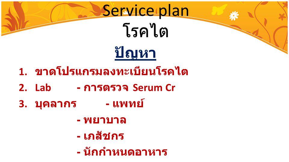 Service plan โรคไต ปัญหา 1. ขาดโปรแกรมลงทะเบียนโรคไต 2.Lab - การตรวจ Serum Cr 3. บุคลากร - แพทย์ - พยาบาล - เภสัชกร - นักกำหนดอาหาร
