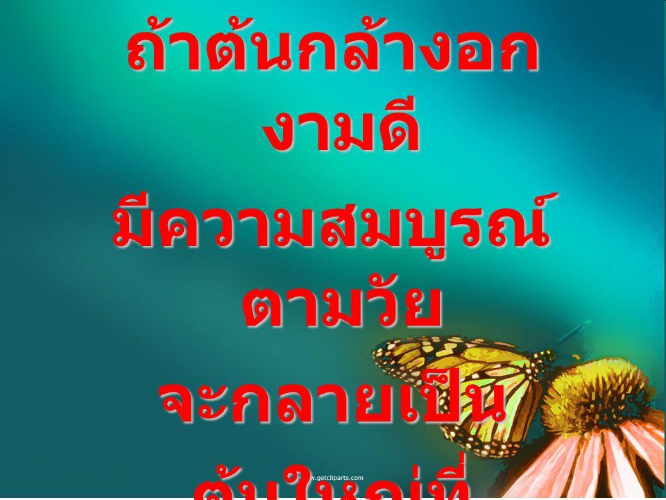 โภชนบัญญัติ เป็น คัมภีร์แห่งการกิน ของ คนไทยยุคใหม่