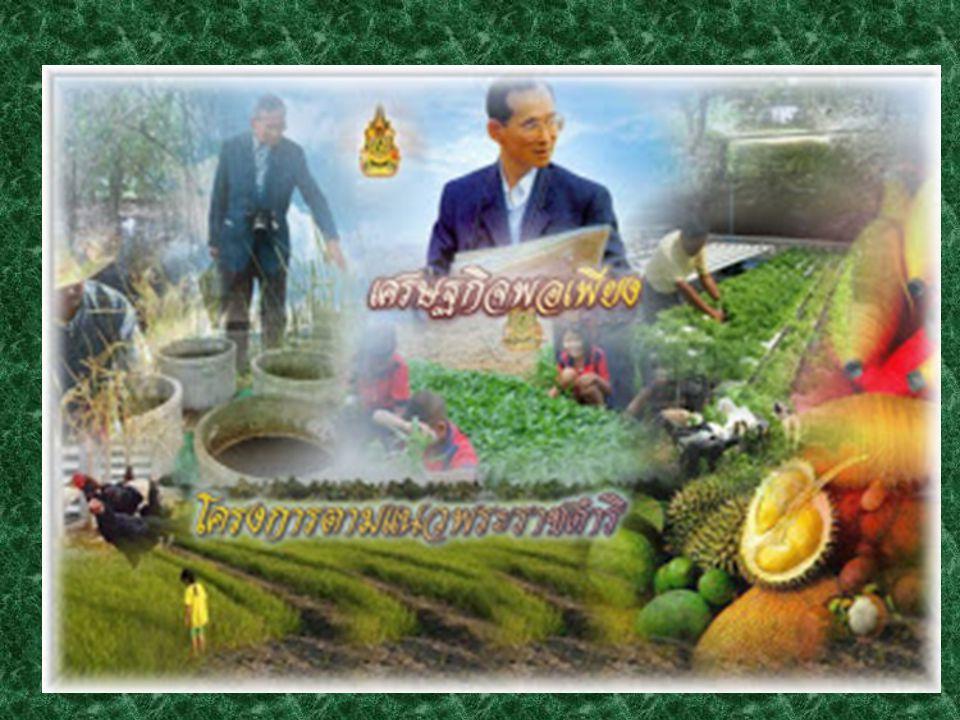 ปัญหา หลักของ เกษตรกรในอดีต จนถึงปัจจุบัน การขาดแคลนน้ำ เพื่อเกษตรกรรม ระบบการปลูกพืช ไม่มีหลักเกณฑ์