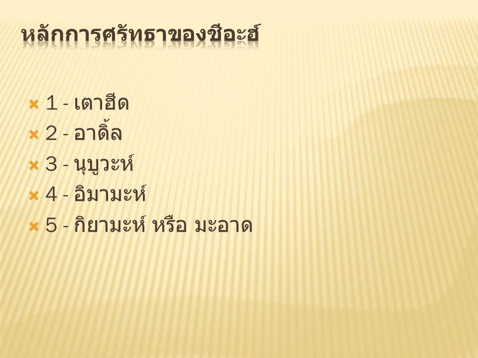  1 - เตาฮีด  2 - อาดิ้ล  3 - นุบูวะห์  4 - อิมามะห์  5 - กิยามะห์ หรือ มะอาด