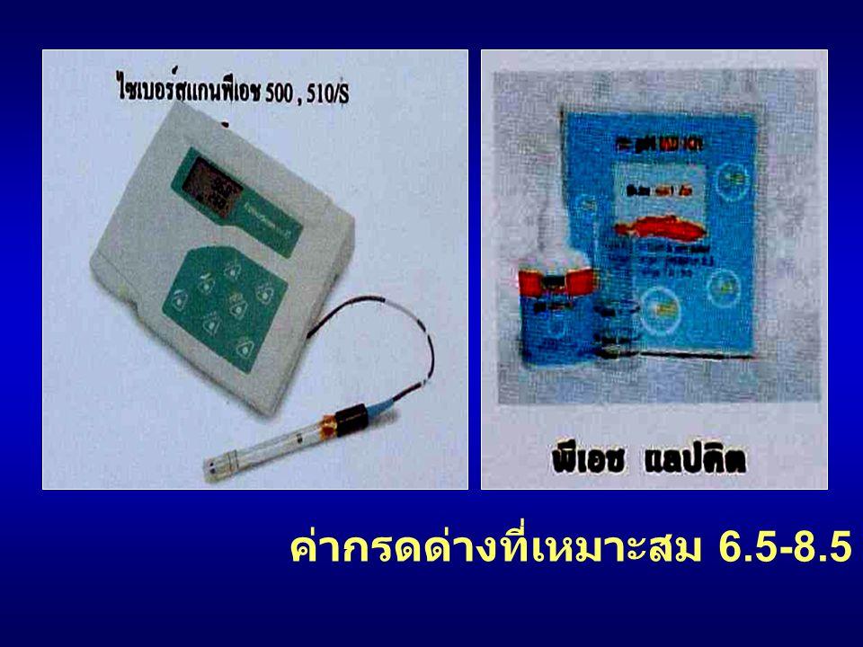 - ค่าออกซิเจนที่ละลายในน้ำควร ~ 5 มก / ลิตร (ppm) - …planktons, air, Rx - น้ำใต้ดิน … O 2 ต่ำ