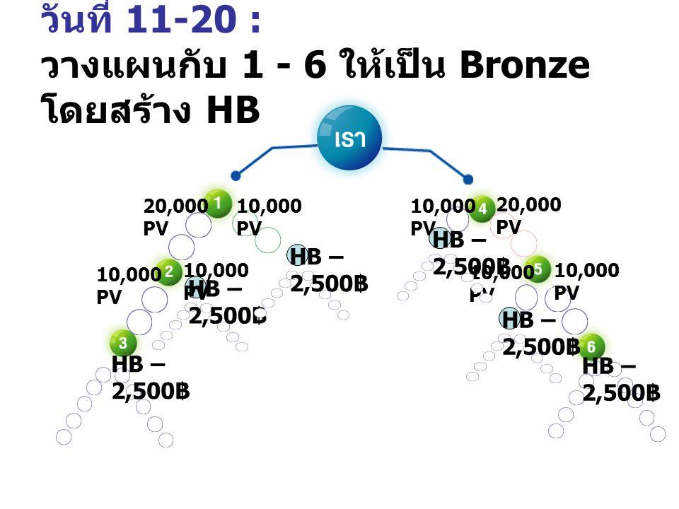 วันที่ 11-20: วางแผนกับ 1,2,4,5 ให้เป็น Bronze โดยสร้าง HB 10,000 PV 20,000 PV 10,000 PV 20,000 PV 10,000 PV HB B~5, 000 ฿