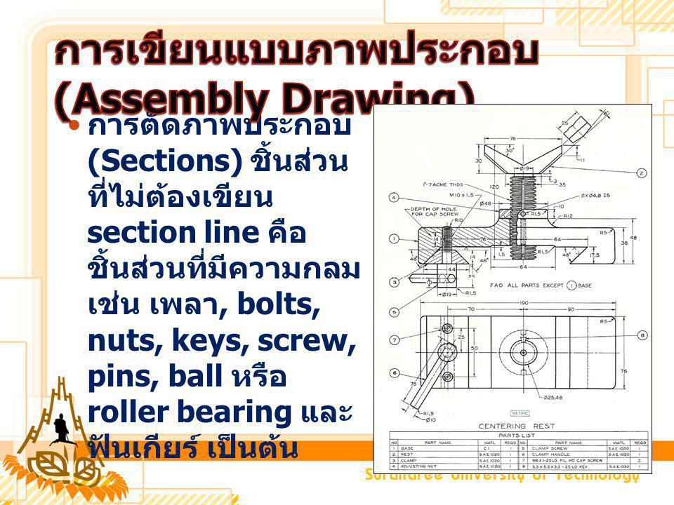 การตัดภาพประกอบ (Sections) ชิ้นส่วน ที่ไม่ต้องเขียน section line คือ ชิ้นส่วนที่มีความกลม เช่น เพลา, bolts, nuts, keys, screw, pins, ball หรือ roller bearing และ ฟันเกียร์ เป็นต้น