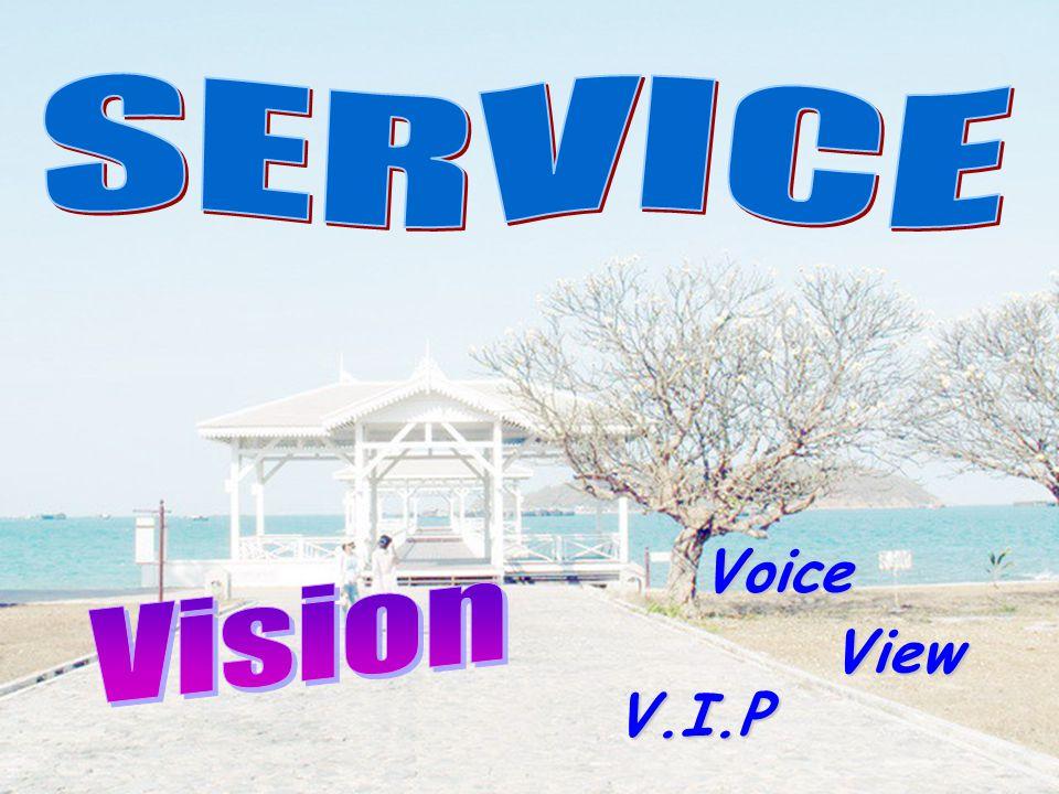 Voice V.I.P View