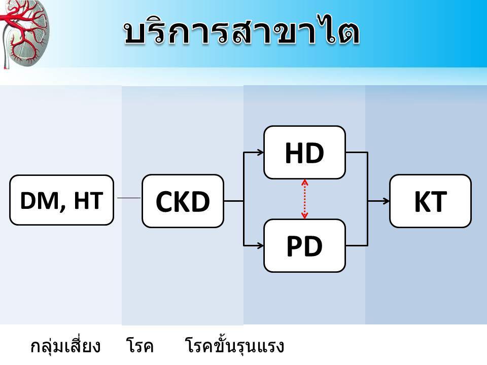 CKD HD PD KT DM, HT กลุ่มเสี่ยง โรค โรคขั้นรุนแรง