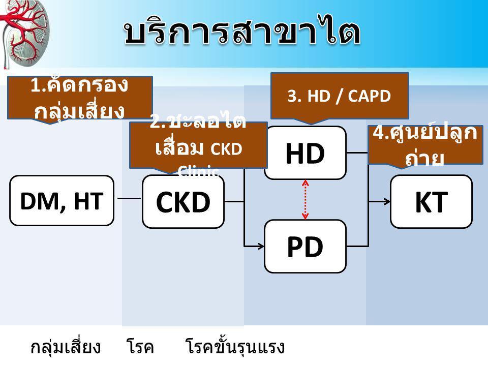 CKD HD PD KT DM, HT CRRT 1.คัดกรอง กลุ่มเสี่ยง 2.