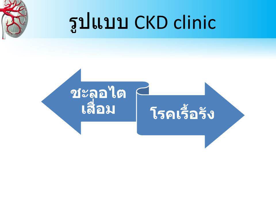 รูปแบบ CKD clinic ชะลอไต เสื่อม โรคเรื้อรัง
