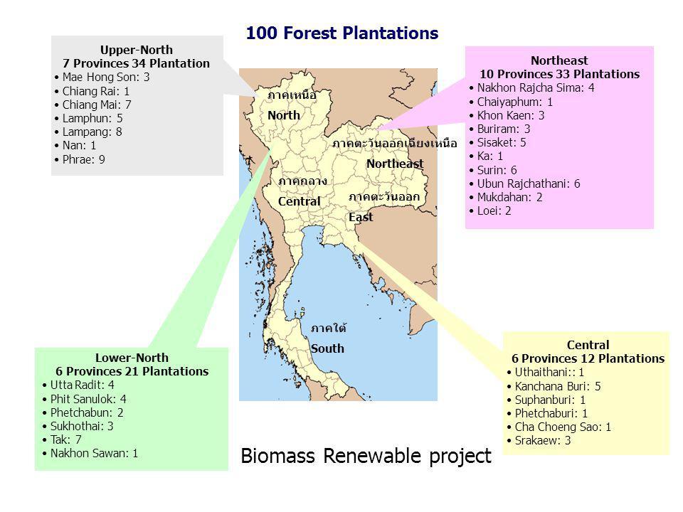 Lower-North 6 Provinces 21 Plantations Utta Radit: 4 Phit Sanulok: 4 Phetchabun: 2 Sukhothai: 3 Tak: 7 Nakhon Sawan: 1 Central 6 Provinces 12 Plantations Uthaithani:: 1 Kanchana Buri: 5 Suphanburi: 1 Phetchaburi: 1 Cha Choeng Sao: 1 Srakaew: 3 Northeast 10 Provinces 33 Plantations Nakhon Rajcha Sima: 4 Chaiyaphum: 1 Khon Kaen: 3 Buriram: 3 Sisaket: 5 Ka: 1 Surin: 6 Ubun Rajchathani: 6 Mukdahan: 2 Loei: 2 Upper-North 7 Provinces 34 Plantation Mae Hong Son: 3 Chiang Rai: 1 Chiang Mai: 7 Lamphun: 5 Lampang: 8 Nan: 1 Phrae: 9 ภาคเหนือ North ภาคตะวันออกเฉียงเหนือ Northeast ภาคกลาง Central ภาคตะวันออก East ภาคใต้ South 100 Forest Plantations Biomass Renewable project