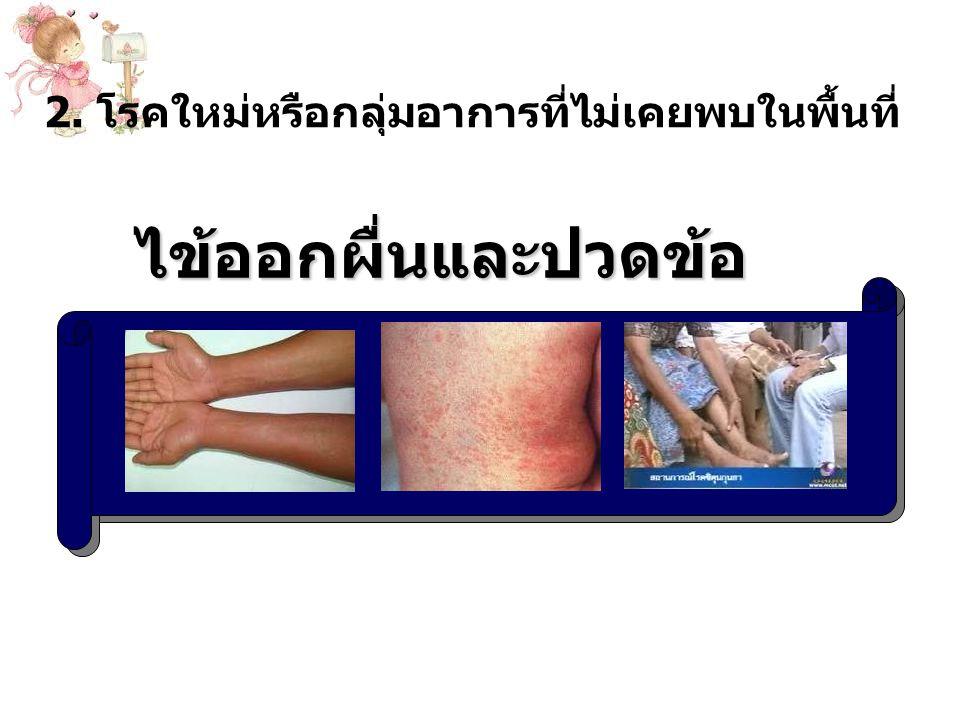 2. โรคใหม่หรือกลุ่มอาการที่ไม่เคยพบในพื้นที่ ไข้ออกผื่นและปวดข้อ