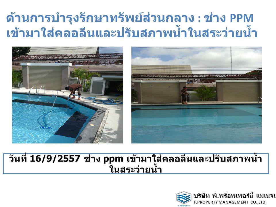 ด้านการบำรุงรักษาทรัพย์ส่วนกลาง : ช่าง PPM เข้ามาใส่คลอลีนและปรับสภาพน้ำในสระว่ายน้ำ วันที่ 16/9/2557 ช่าง ppm เข้ามาใส่คลอลีนและปรับสภาพน้ำ ในสระว่ายน้ำ บริษัท พี.