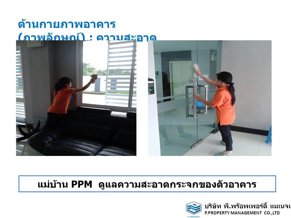 ด้านกายภาพอาคาร ( ภาพลักษณ์ ) : ความสะอาด แม่บ้าน PPM ดูแลความสะอาดกระจกของตัวอาคาร บริษัท พี.