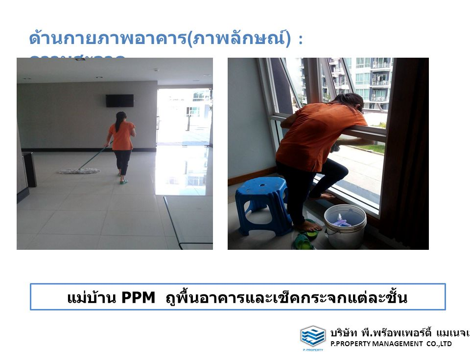 ด้านกายภาพอาคาร ( ภาพลักษณ์ ) : ความสะอาด แม่บ้าน PPM ถูพื้นอาคารและเช็คกระจกแต่ละชั้น บริษัท พี.