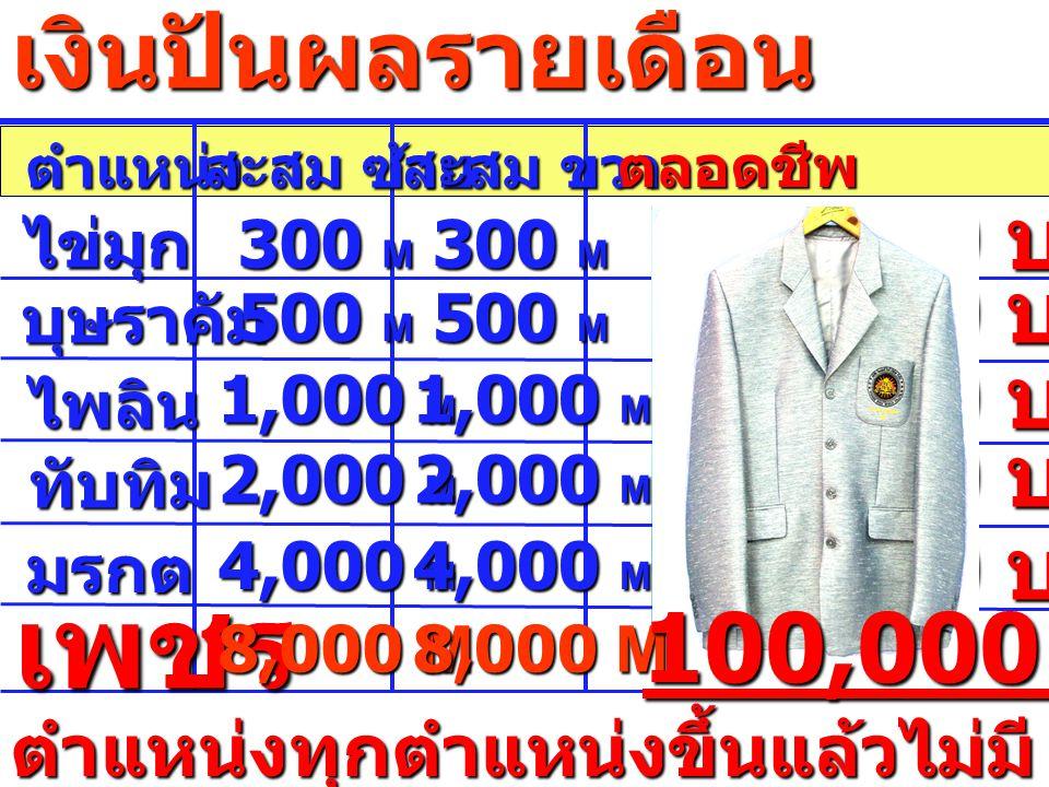 ตำแหน่ง สะสม ซ้าย สะสม ขวา ตลอดชีพ ไข่มุก บุษราคัม 300 M 10,000 บาท 500 M 15,000 บาท ไพลิน 1,000 M 20,000 บาท ทับทิม 2,000 M 25,000 บาท มรกต 4,000 M 50,000 บาท เพชร 8,000 M 100,000 บาท ตำแหน่งทุกตำแหน่งขึ้นแล้วไม่มี ตก เงินปันผลรายเดือน