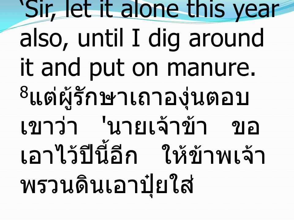 8 And he answered him, 'Sir, let it alone this year also, until I dig around it and put on manure.