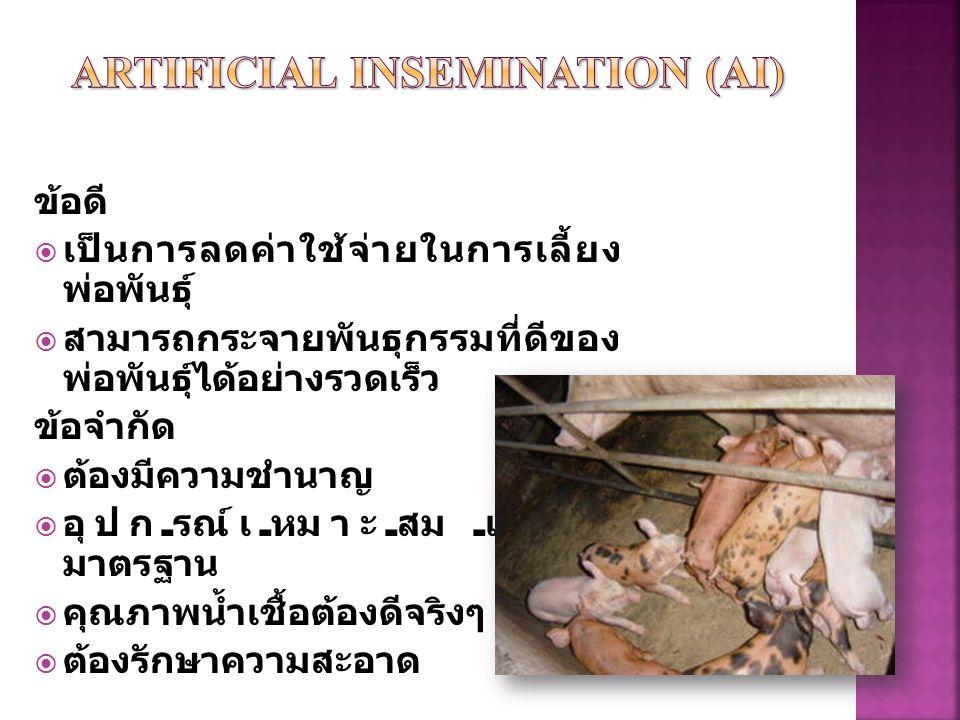 DonorRecipient Manipulation of estrus Embryo transfer การเหนี่ยวนำให้สัตว์ตัวเมียตก ไข่จำนวนมากและเป็นตัวให้ตัว อ่อนสำหรับการย้ายฝาก Superovulation Manipulation of estrus A.I.