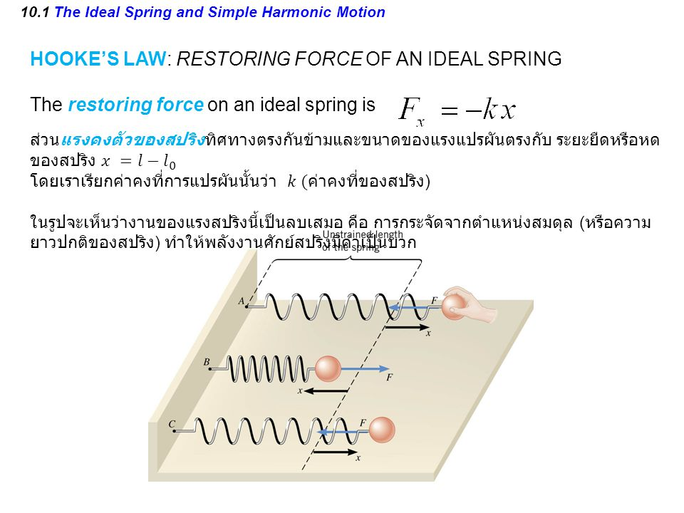 10.1 The Ideal Spring and Simple Harmonic Motion HOOKE'S LAW: RESTORING FORCE OF AN IDEAL SPRING The restoring force on an ideal spring is