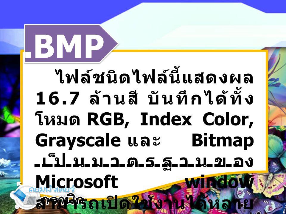 .BMP ไฟล์ชนิดไฟล์นี้แสดงผล 16.7 ล้านสี บันทึกได้ทั้ง โหมด RGB, Index Color, Grayscale และ Bitmap เป็นมาตรฐานของ Microsoft window สามารถเปิดใช้งานได้หล
