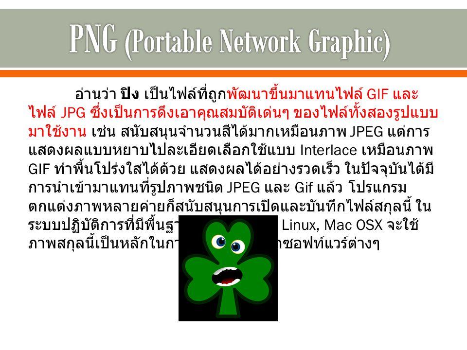 อ่านว่า ปิง เป็นไฟล์ที่ถูกพัฒนาขึ้นมาแทนไฟล์ GIF และ ไฟล์ JPG ซึ่งเป็นการดึงเอาคุณสมบัติเด่นๆ ของไฟล์ทั้งสองรูปแบบ มาใช้งาน เช่น สนับสนุนจำนวนสีได้มากเหมือนภาพ JPEG แต่การ แสดงผลแบบหยาบไปละเอียดเลือกใช้แบบ Interlace เหมือนภาพ GIF ทำพื้นโปร่งใสได้ด้วย แสดงผลได้อย่างรวดเร็ว ในปัจจุบันได้มี การนำเข้ามาแทนที่รูปภาพชนิด JPEG และ Gif แล้ว โปรแกรม ตกแต่งภาพหลายค่ายก็สนับสนุนการเปิดและบันทึกไฟล์สกุลนี้ ใน ระบบปฏิบัติการที่มีพื้นฐานจาก Unix เช่น Linux, Mac OSX จะใช้ ภาพสกุลนี้เป็นหลักในการบันทึกภาพจากซอฟท์แวร์ต่างๆ