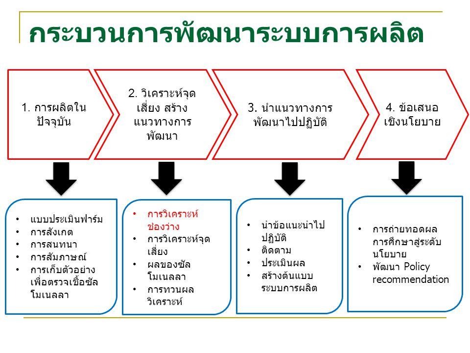 กระบวนการพัฒนาระบบการผลิต 1. การผลิตใน ปัจจุบัน 2. วิเคราะห์จุด เสี่ยง สร้าง แนวทางการ พัฒนา 3. นำแนวทางการ พัฒนาไปปฏิบัติ 4. ข้อเสนอ เชิงนโยบาย แบบปร