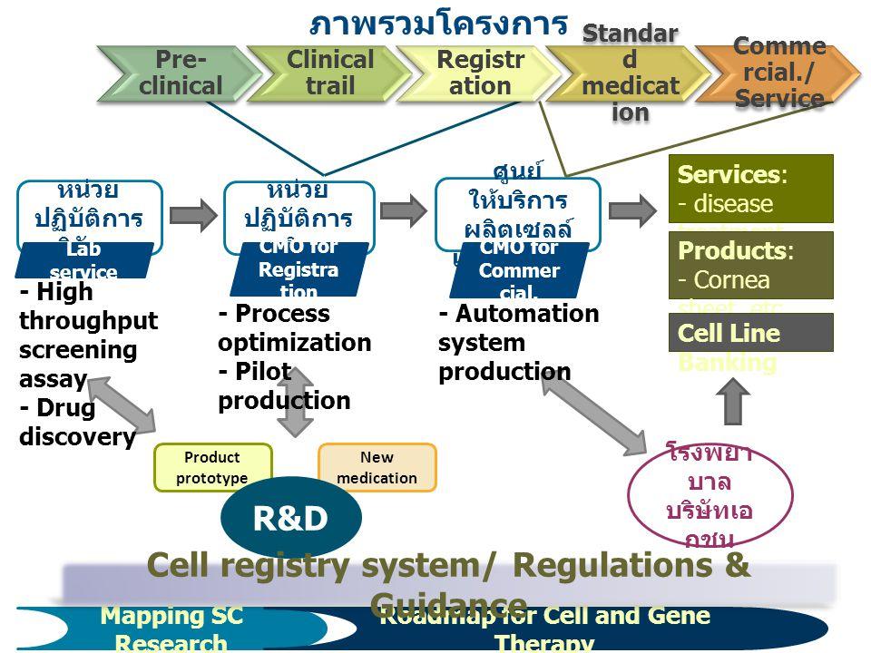 ภาพรวมโครงการ 3 หน่วย ปฏิบัติการ วิจัยฯ Product prototype New medication หน่วย ปฏิบัติการ ผลิตฯ ศูนย์ ให้บริการ ผลิตเซลล์ เชิงพาณิชย์ R&D โรงพยา บาล บ