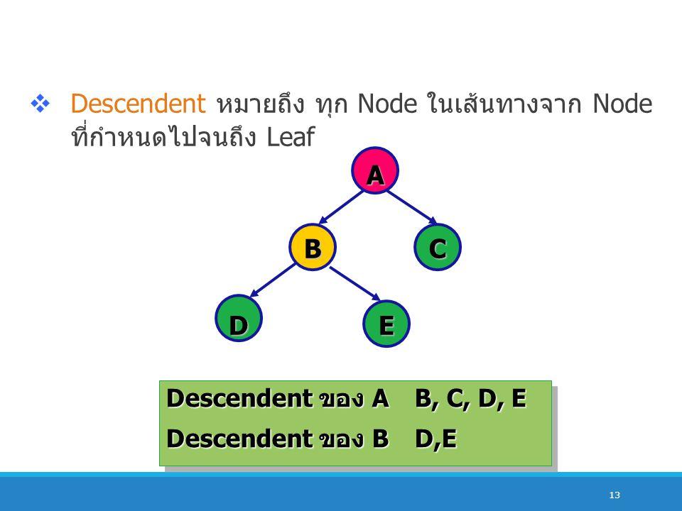 13  Descendent หมายถึง ทุก Node ในเส้นทางจาก Node ที่กำหนดไปจนถึง Leaf A BC DE Descendent ของ AB, C, D, E Descendent ของ BD,E Descendent ของ AB, C, D
