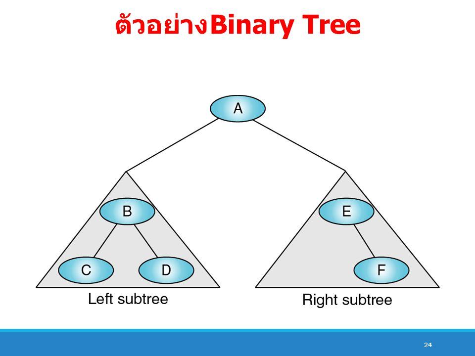 24 ตัวอย่าง Binary Tree