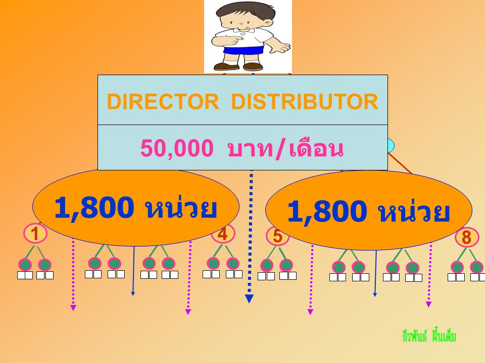 ฉัน A CD 3412 B EF 78 5 6 1,800 หน่วย DIRECTOR DISTRIBUTOR 50,000 บาท / เดือน