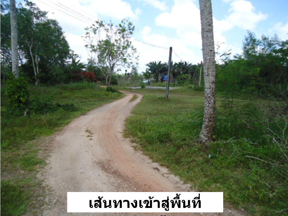 เส้นทางเข้าสู่พื้นที่ ตชด. ๔๒