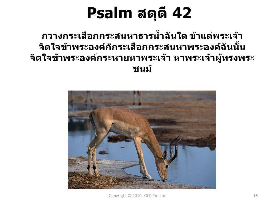Psalm สดุดี 42 กวางกระ  เสือก  กระ  สนหาธาร  น้ำฉัน  ใด ข้า  แต่พระ  เจ้า จิต  ใจข้า  พระ  องค์ก็กระ  เสือก  กระ  สนหาพระ  องค์ฉัน  นั้น จิต  ใจข้า  พระ  องค์กระ  หายหาพระ  เจ้า หาพระ  เจ้าผู้ทรงพระ  ชนม์ Copyright © 2010, GLC Pte Ltd16
