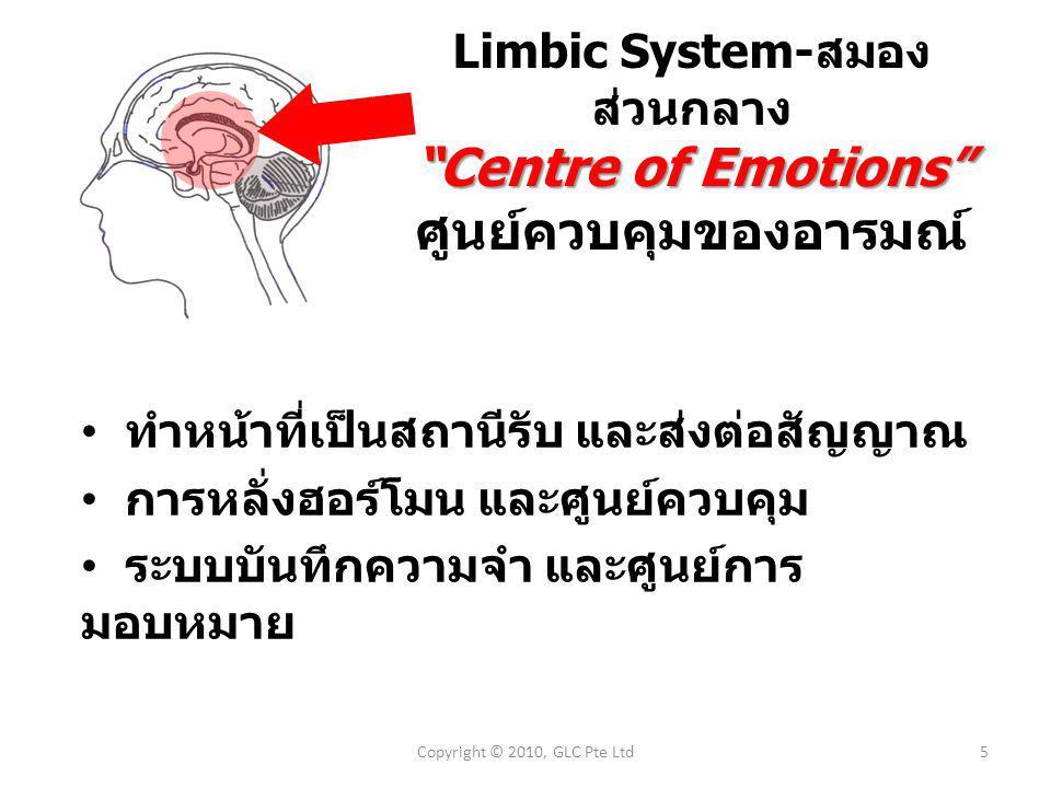 ทำหน้าที่เป็นสถานีรับ และส่งต่อสัญญาณ การหลั่งฮอร์โมน และศูนย์ควบคุม ระบบบันทึกความจำ และศูนย์การ มอบหมาย Limbic System- สมอง ส่วนกลาง Centre of Emotions ศูนย์ควบคุมของอารมณ์ 5Copyright © 2010, GLC Pte Ltd