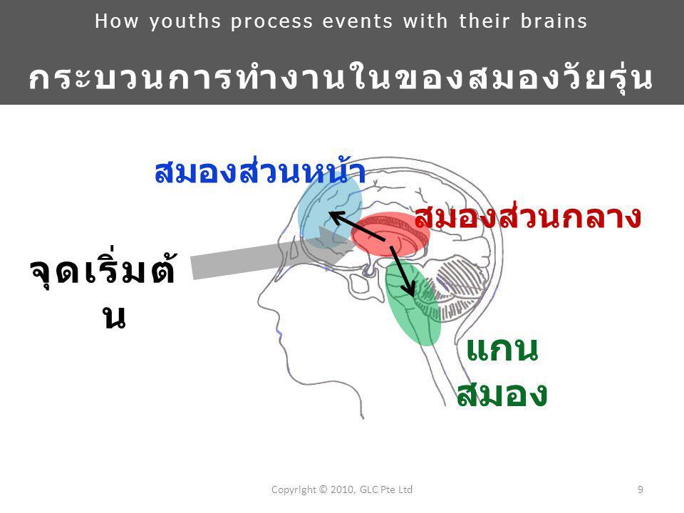 สมองส่วนหน้า 9Copyright © 2010, GLC Pte Ltd แกน สมอง สมองส่วนกลาง จุดเริ่มต้ น How youths process events with their brains กระบวนการทำงานในของสมองวัยรุ่น