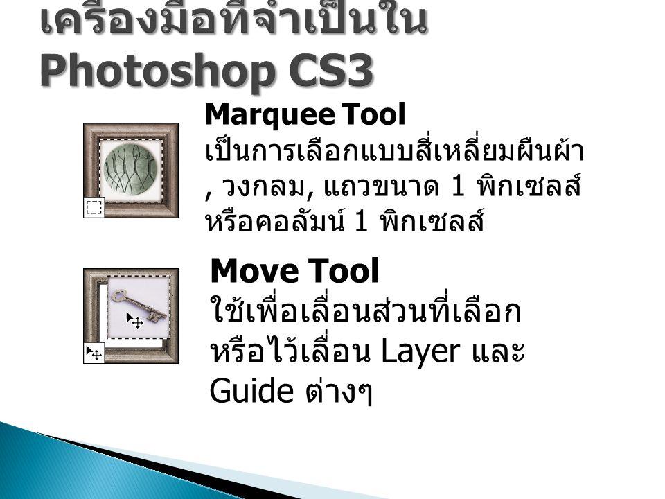 Marquee Tool เป็นการเลือกแบบสี่เหลี่ยมผืนผ้า, วงกลม, แถวขนาด 1 พิกเซลส์ หรือคอลัมน์ 1 พิกเซลส์ Move Tool ใช้เพื่อเลื่อนส่วนที่เลือก หรือไว้เลื่อน Layer และ Guide ต่างๆ