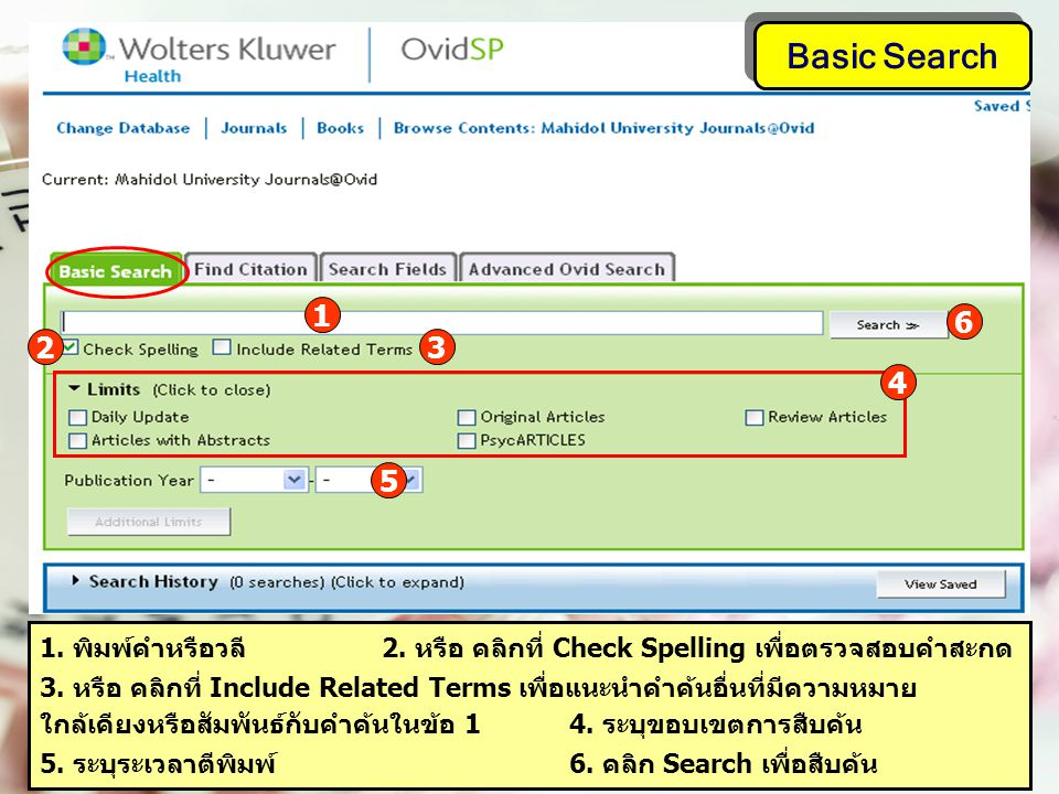 Basic Search 1 1. พิมพ์คำหรือวลี 2. หรือ คลิกที่ Check Spelling เพื่อตรวจสอบคำสะกด 3.