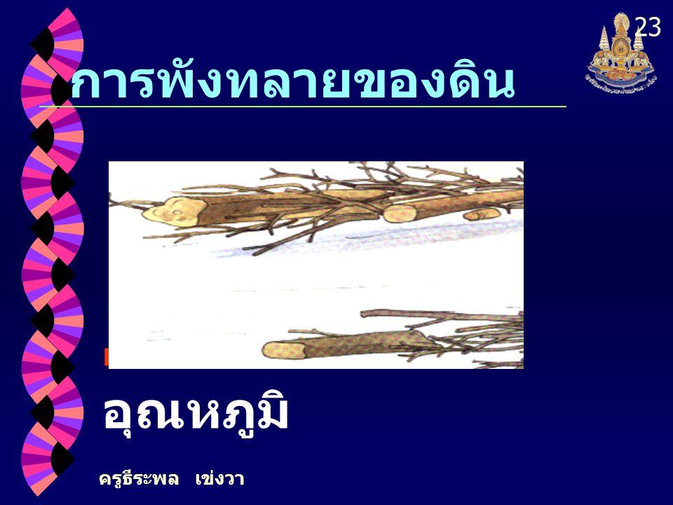 ครูธีระพล เข่งวา 23 การพังทลายของดิน การเปลี่ยนแปลง อุณหภูมิ