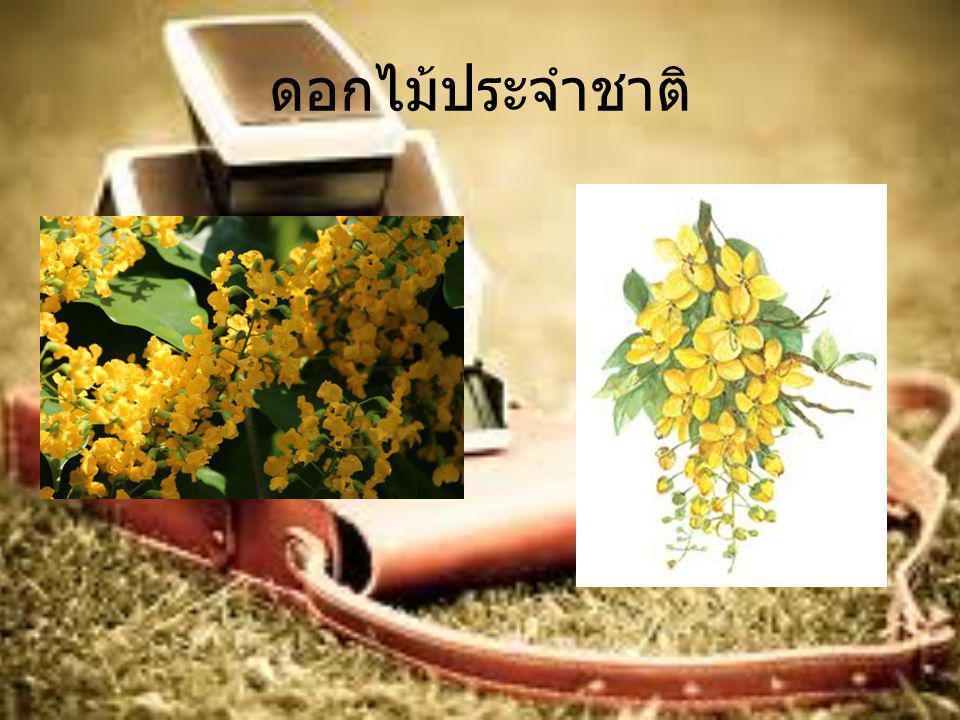 การเมืองการปกครอง ประมุข * และประธานาธิบดี นายเต็ง เส่ง (U Thein Sein) * หมายเหตุ พลเอกอาวุโส ตาน ฉ่วย (Senior General Than Shwe) อดีตประมุข ซึ่งยังคงดำรงยศทางทหาร แต่ไม่ได้ดำรงตำแหน่งทางกฎหมายตามรัฐธรรมนูญ เมียนมาร์ รัฐมนตรีต่างประเทศ นายวันนะ หม่อง ลวิน (U Wunna Maung Lwin) ระบอบการปกครอง รัฐสภาที่สมาชิกมาจากการ เลือกตั้ง โดยมีประธานาธิบดีเป็นประมุขประเทศและ หัวหน้ารัฐบาล เขตการปกครอง แบ่งการปกครองเป็น 7 รัฐ (state) สำหรับเขตที่ประชากรส่วนใหญ่เป็นชนกลุ่มน้อย และ 7 ภาค (region) สำหรับเขตที่ประชากรส่วนใหญ่เป็นเชื้อ สายพม่า วันชาติ ๔ มกราคม ค.