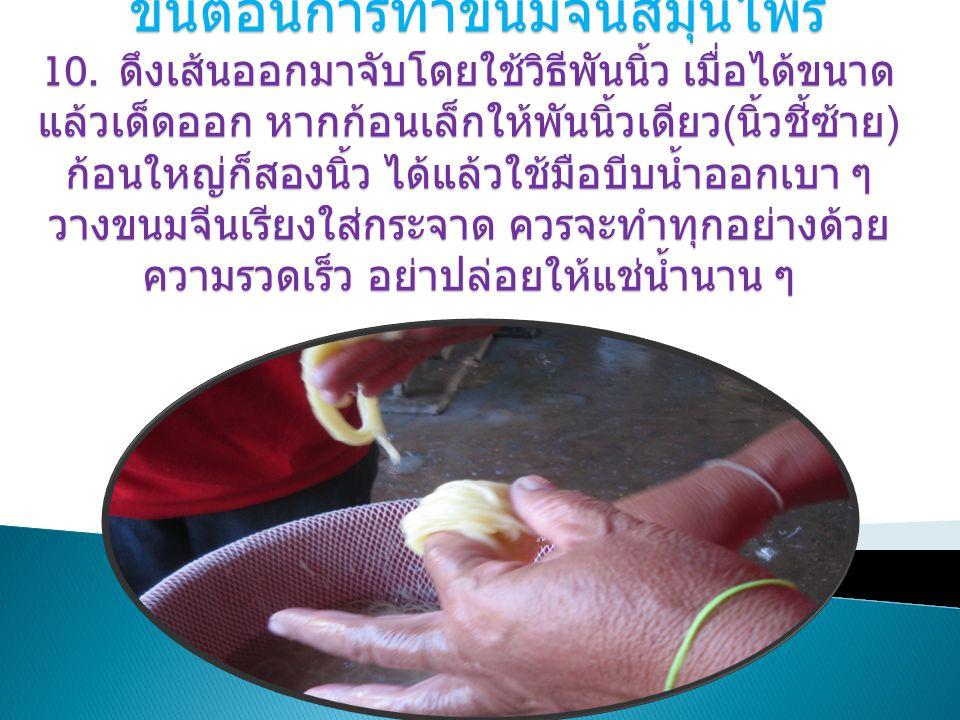 ขั้นตอนการทำขนมจีนสมุนไพร 10. ดึงเส้นออกมาจับโดยใช้วิธีพันนิ้ว เมื่อได้ขนาด แล้วเด็ดออก หากก้อนเล็กให้พันนิ้วเดียว ( นิ้วชี้ซ้าย ) ก้อนใหญ่ก็สองนิ้ว ไ