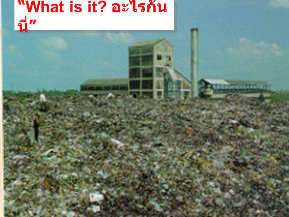 Your Topic Goes Here Your subtopic goes here น้ำหมักชีวภาพจากเศษ อาหาร