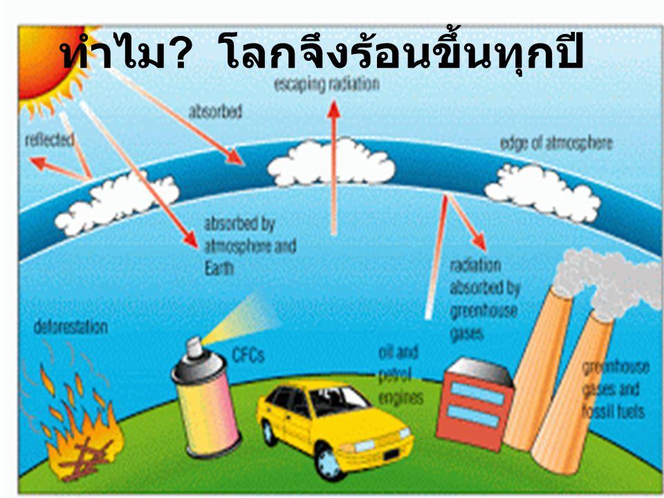 ใช้รถโดยสารแทนการใช้ รถยนต์ส่วนตัว เพราะเป็นการลดใช้ พลังงานลดการปล่อย มลพิษต่อสิ่งแวดล้อม