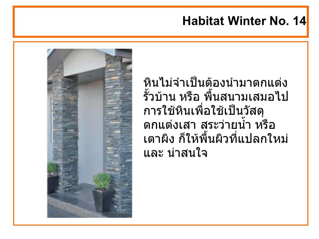 หินไม่จำเป็นต้องนำมาตกแต่ง รั้วบ้าน หรือ พื้นสนามเสมอไป การใช้หินเพื่อใช้เป็นวัสดุ ตกแต่งเสา สระว่ายน้ำ หรือ เตาผิง ก็ให้พื้นผิวที่แปลกใหม่ และ น่าสนใจ Habitat Winter No.